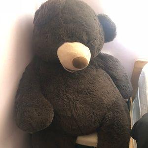 Bears 4 feet tall